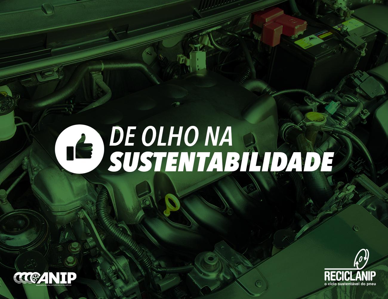 Prefeitura de Ernestina em parceria com Reciclanip executou trabalho de retirada de pneus